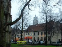 Grote Gezelle Plein viewed from Church of Our Lady and Museum of Bruges (Onthaalkerk Onze Lieve Vrouw en Bruggemueum) St.Saviour's Cathedral (Sint-Salvatorskathedraal&#41 Bruges Belgium copyright free photo royalty free photo January 2007